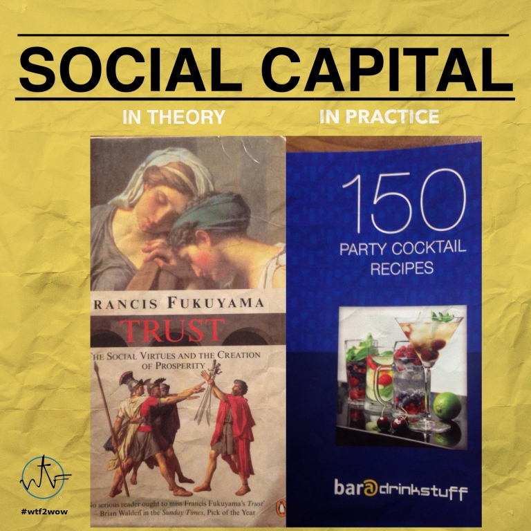 social-capital-theory-practice